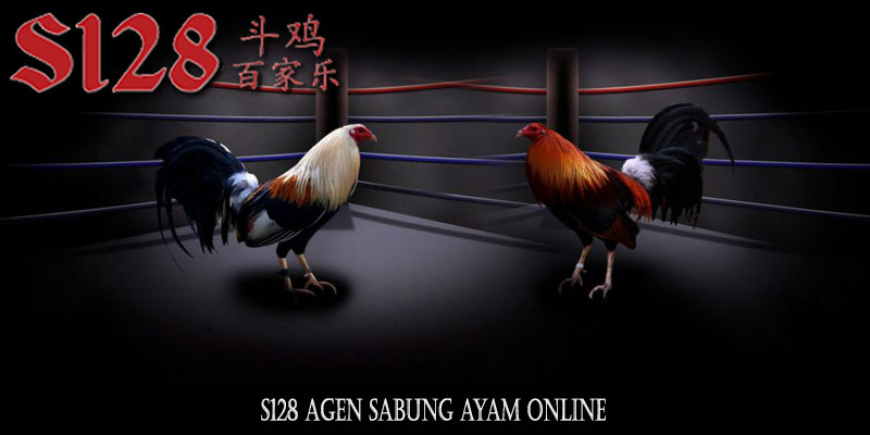 Link Alternatif S128 Sabung Ayam